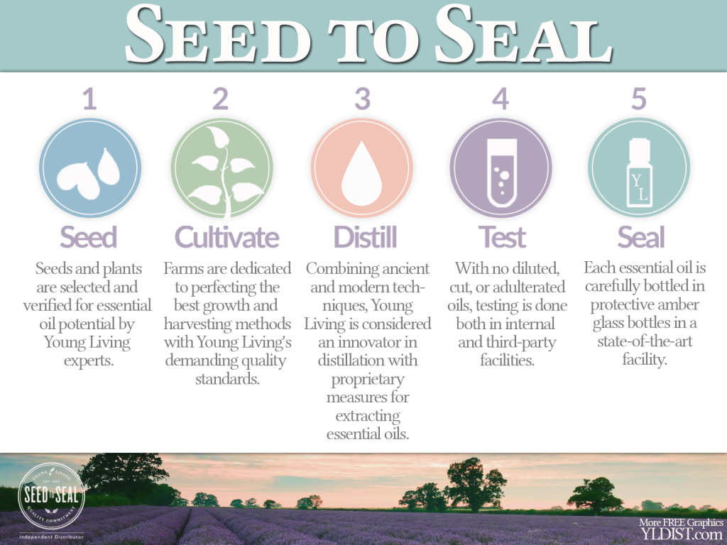 Seed-Seal-public